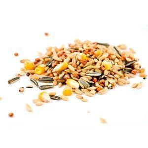 Ziarna nasiona